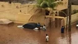 Bamako Ji Wɔyɔ