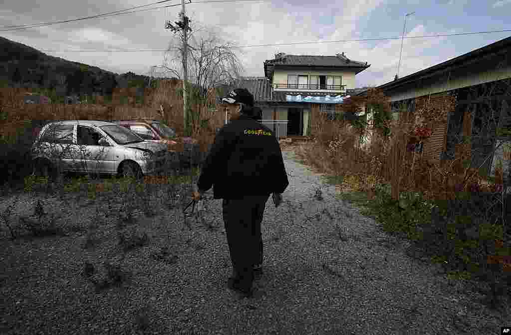 Former resident Susumu Ikeda walks past an overgrown garden in the abandoned town of Namie, just outside the exclusion zone around the Fukushima plant, Nov. 20, 2011.
