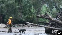 La coulée de boue a renversé des arbres, détruit des voitures et recouvert d'une épaisse couche de boue quantité d'habitations