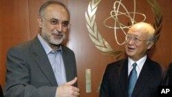 Dirjen IAEA, Yukiya Amano (kanan) melakukan pembicaraan dengan Menlu Iran, Ali Akbar Salehî di Wiena, Austria (foto: dok).