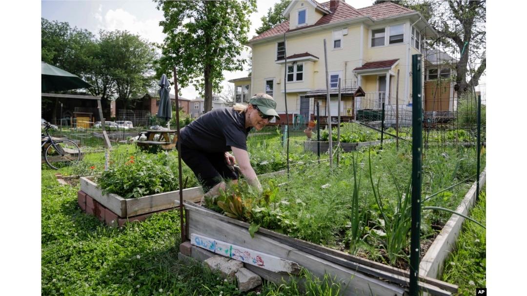The Brains Secret Gardeners >> The Health Benefits Of Gardening
