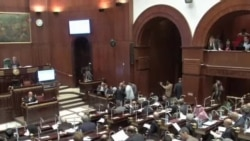 埃及憲法委員會繼續投票表決憲法草案