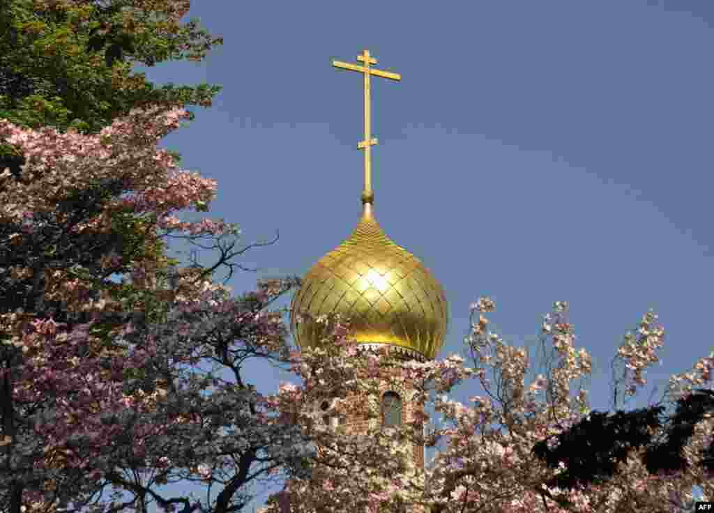 Купол собора Святого Иоанна Предтечи