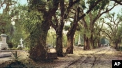 "The Bonaventure cemetery, the spooky Savannah cemetery that inspired the title of the book, ""Midnight in the Garden of Good and Evil."""