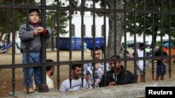 Refugees look through the fence around the asylum processing center in Traiskirchen, Austria, Aug. 17, 2015.