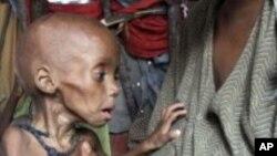 صومالیہ میں نصف سے زیادہ متاثرہ افراد کو خوراک فراہم کردی گئی: اقوام متحدہ