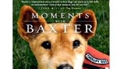 انتشار کتاب خاطراتی درباره سگی که مردم را شفا می داد