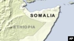 Al-Qaida Linked Group Gains Control of Somali Port City