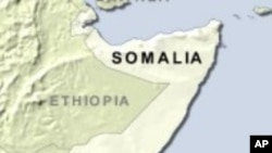 Al-Qaida Linked Group Gains Control of Somali Port City