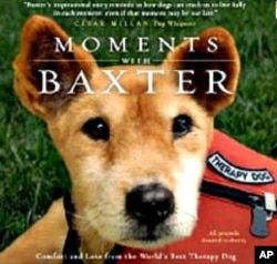 "In her book, ""Moments with Baxter"", Joseph shares true stories about the connection Baxter made with terminally ill people"