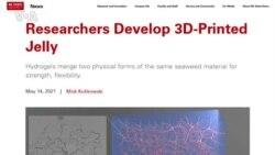 Американские ученые объявили о создании материала из водорослей для 3D- печати