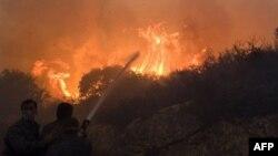 Ізраїльські пожежники борються з полум'ям, яке охопило північ країни