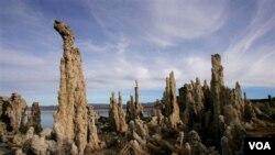La bacteria fue descubierta en un lago en California y ha motivado teorías sobre vida extraterrestre.