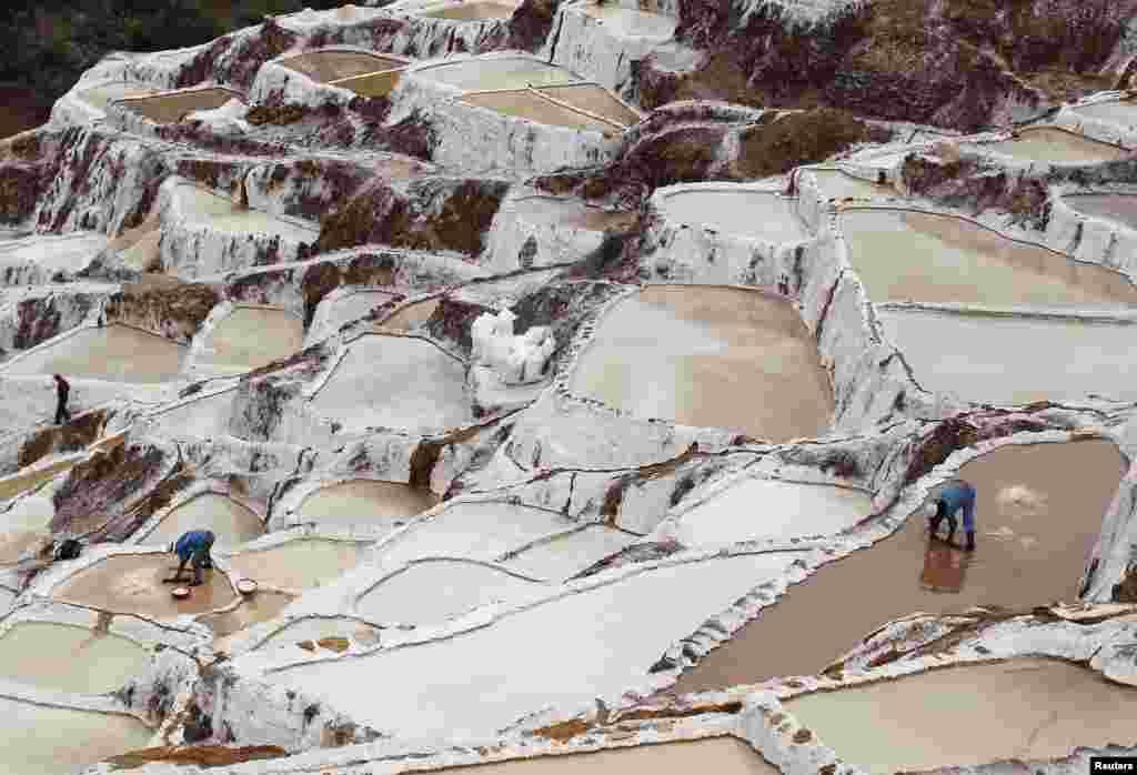 Para pekerja mengambil garam dari tambang garam Maras, yang sudah dibangun sejak jaman Inca, di kota Cuzco, Peru.