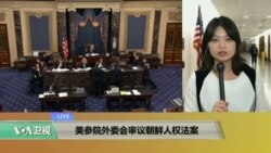 VOA连线:美参院外委会审议朝鲜人权法案