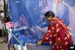 বাংলাদেশে ডেঙ্গু ভাইরাসের 'ডেনভি-৩' মানুষকে বেশি আক্রান্ত করছে - বিসিএসআইআর