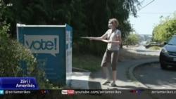 SHBA, debat mbi zgjerimin e votimit me postë