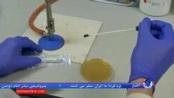 پزشکی: کشفی جدید برای اینکه بدن به آنتی بیوتیک ها عادت نکند