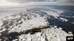 Tàu Nisshin Maru ngưng hoạt động hồi tuần trước vì các vấn đề an toàn
