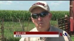 美国农场主欢迎TPP