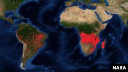 La carte intéractive de la Nasa montre les incendies en temps réel. (Nasa)
