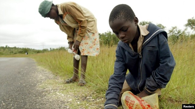 FILE - Zimbabwean children collect maize that has fallen from transport trucks near the town of Esigodini 450 Km's south west of the capital Harare.