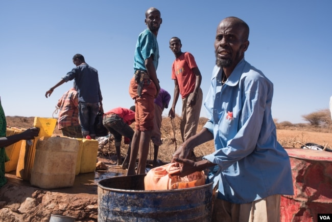 FILE - Mohamed Ibrahim Yassin scoops well water from a barrel for his remaining livestock in the Somaliland region of Somalia, Feb. 9, 2017. (J. Patinkin/VOA)