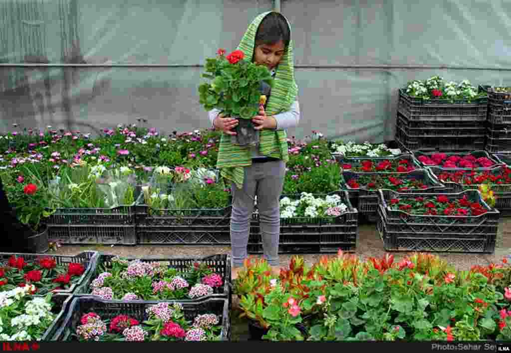 بازار گل و گیاه تهران در آستانه نوروز