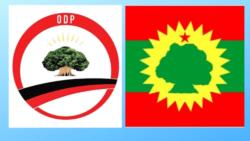 Ogeeyyiin Siyaasaa Dhimma Nageenyaa Haala Lixaa fi Kibba Oromiyaa Maal Jedhu?