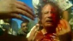 واکنش مقامات نيجر به شايعات مربوط به سيف الاسلام قذافی