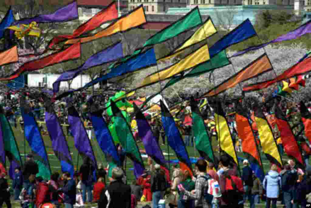 Festival zmajeva na Washingtonskom Mallu