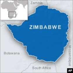 Zimbabwe Legislator Freed on Bail After Calling President Gay