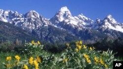 Само во Америка: Националните паркови пусти