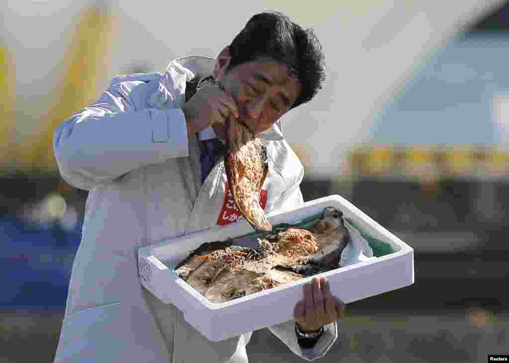 Japan's Prime Minister Shinzo Abe eats a local grilled fish during his official campaign kick-off for the lower house election set for December 14, at the Soma Haragama fishing port in Soma, Fukushima prefecture.