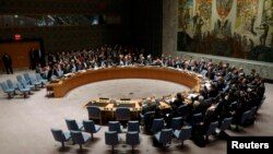 FILE - The United Nations Security Council in session in New York.