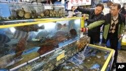 首尔官员在市场上检查活鱼的辐射水平