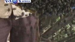 VOA60 Africa 22 Nov 12 Portugues