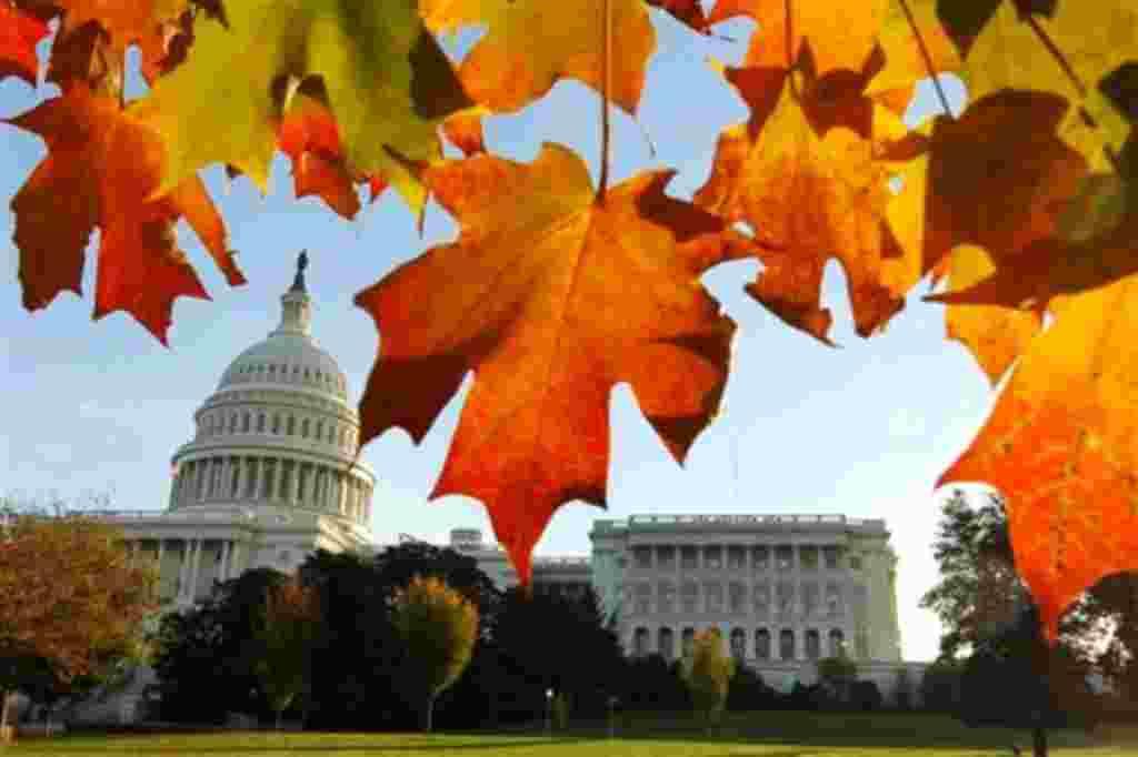 جمعه پنجم نوامبر - هفته ای که گذشت به روایت تصویر
