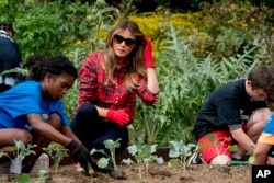 First Lady Melania Trump gardens with children at an event in the White House Kitchen Garden, 2017.