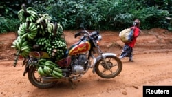 FILE - A motorbike laden with locally-picked bananas is seen parked on a dirt road between the town of Mundemba and village of Fabe, Cameroon, June 8, 2012.