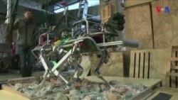 Zəlzələdən sonra xilasetmə işlərinə yardım edən robotlar