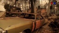 Kaliforniyada yanğınla mübarizə davam edir