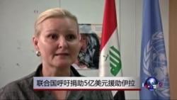 联合国呼吁捐助5亿美元援助伊拉克