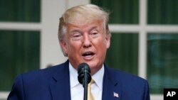 President Donald Trump speaks during an event about the census in the Rose Garden at the White House in Washington, Thursday, July 11, 2019. (AP Photo/Carolyn Kaster)