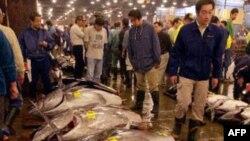 Страх перед радиацией парализовал рыбный бизнес Южной Кореи