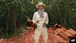 In this photo released by the Cambodian Center for Human Rights, environmentalist Chut Wutty stands on wooden planks in a jungle in Kampong Thom province, Cambodia, Feb. 6, 2012. He was fatally shot later in the year.