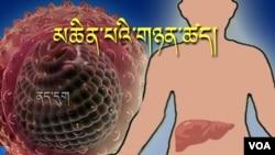 Chữa bịnh viêm gan B bằng tenofovir