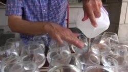 نواختن موسیقی کلاسیک با لیوان های پر از آب