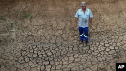 FILE - Riaan du Plessis, a farmer, stands on the cracked earth that three weeks ago was the bottom of a reservoir on his farm in Groot Marico, South Africa, Nov. 12, 2015. Six of South Africa's nine provinces have been hit by drought.