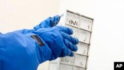"""Seorang petugas tengah membuka sebuah kotak berisi sel-sel darah yang sudah dibersihkan dari protein dari dalam lemari pendingin, untuk diuji coba di """"Perelman School of Medicine"""" di Philadelphia, Januari 2013 (Foto: dok)"""
